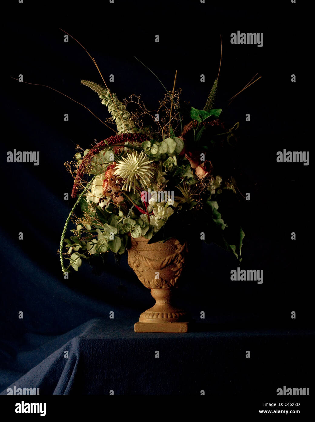 A beautiful potted flower arrangement photographed in a chiaroscuro style. - Stock Image