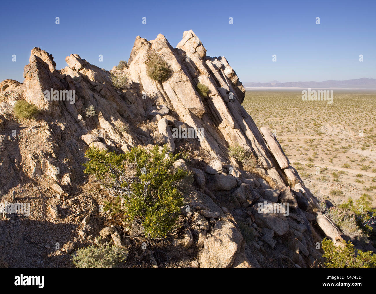 Gneiss rock layers horizontally protrude from the floor of the Mojave desert floor - California USA - Stock Image