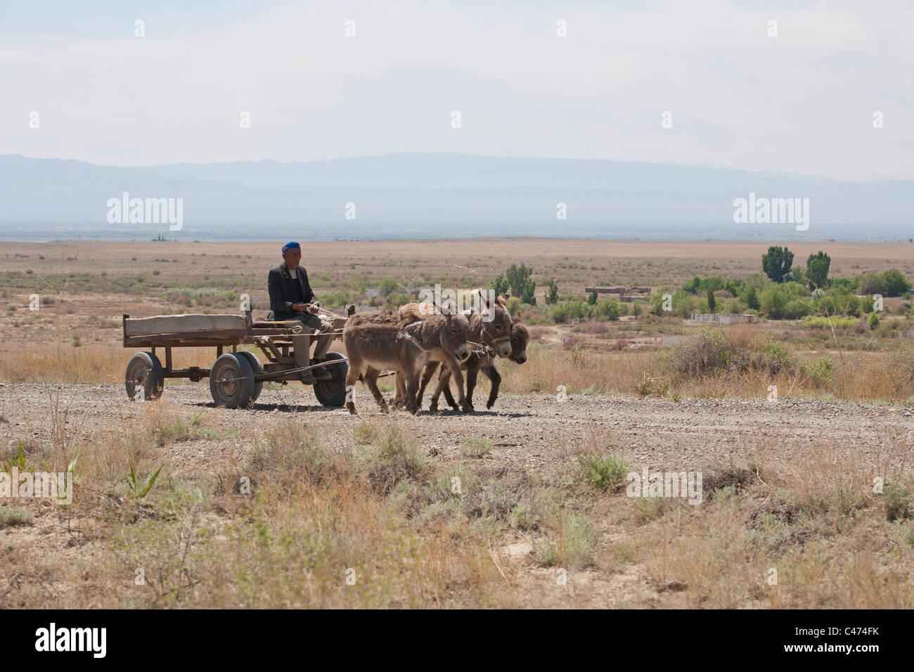 Kazakhstan. In steppe - Stock Image
