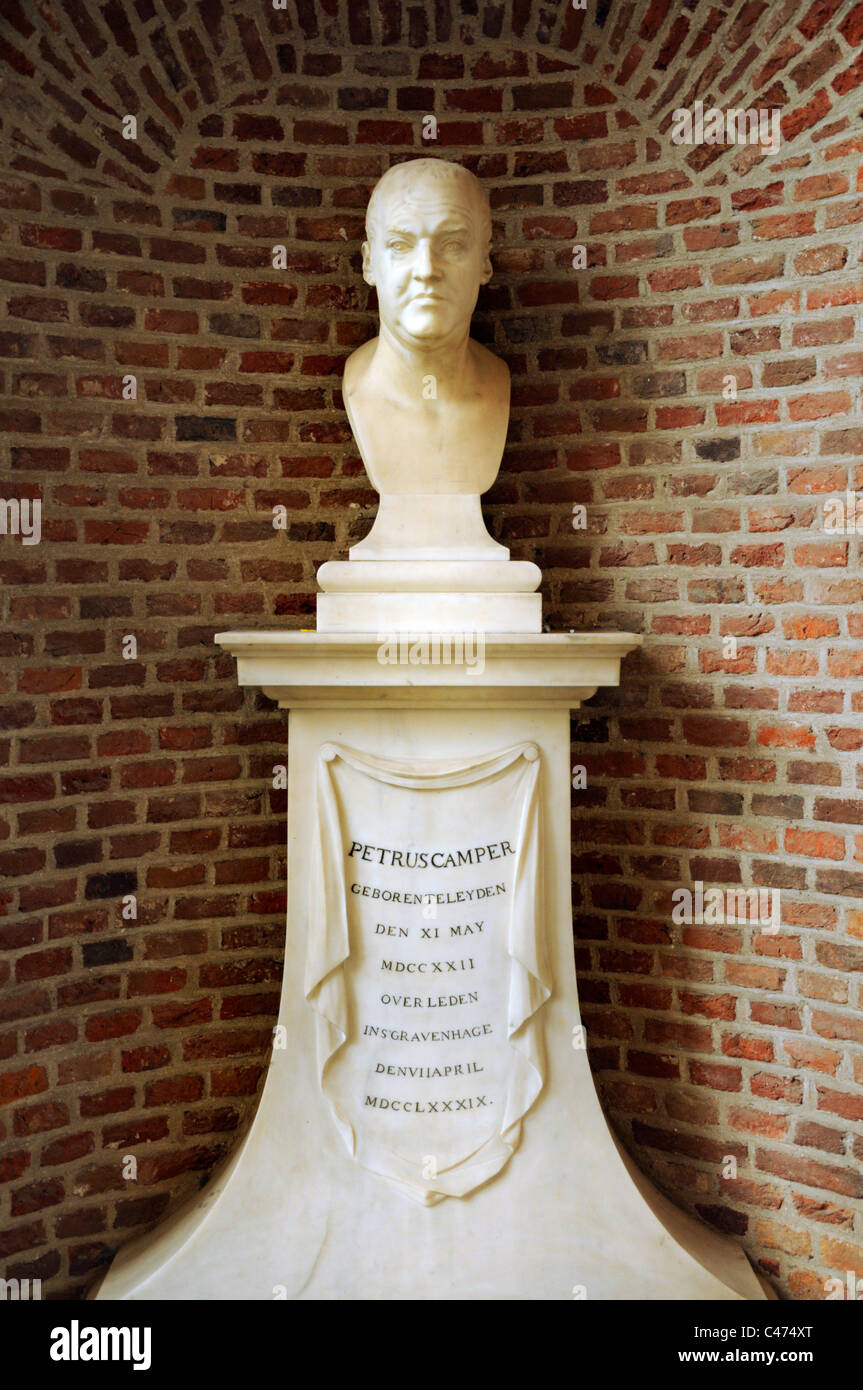 Leiden, Netherlands. Pieterskerk (St Peter's Church - 15thC) Bust of Petrus Camper (1722-89) Anatomist and anthropologist - Stock Image