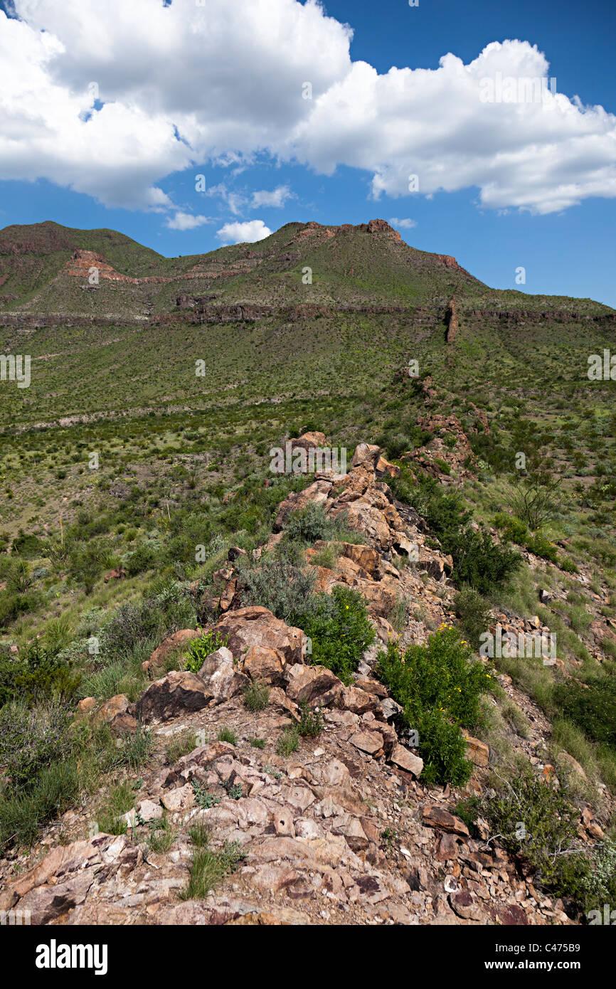 Dyke across the Chihuahuan Desert Big Bend National Park Texas USA - Stock Image