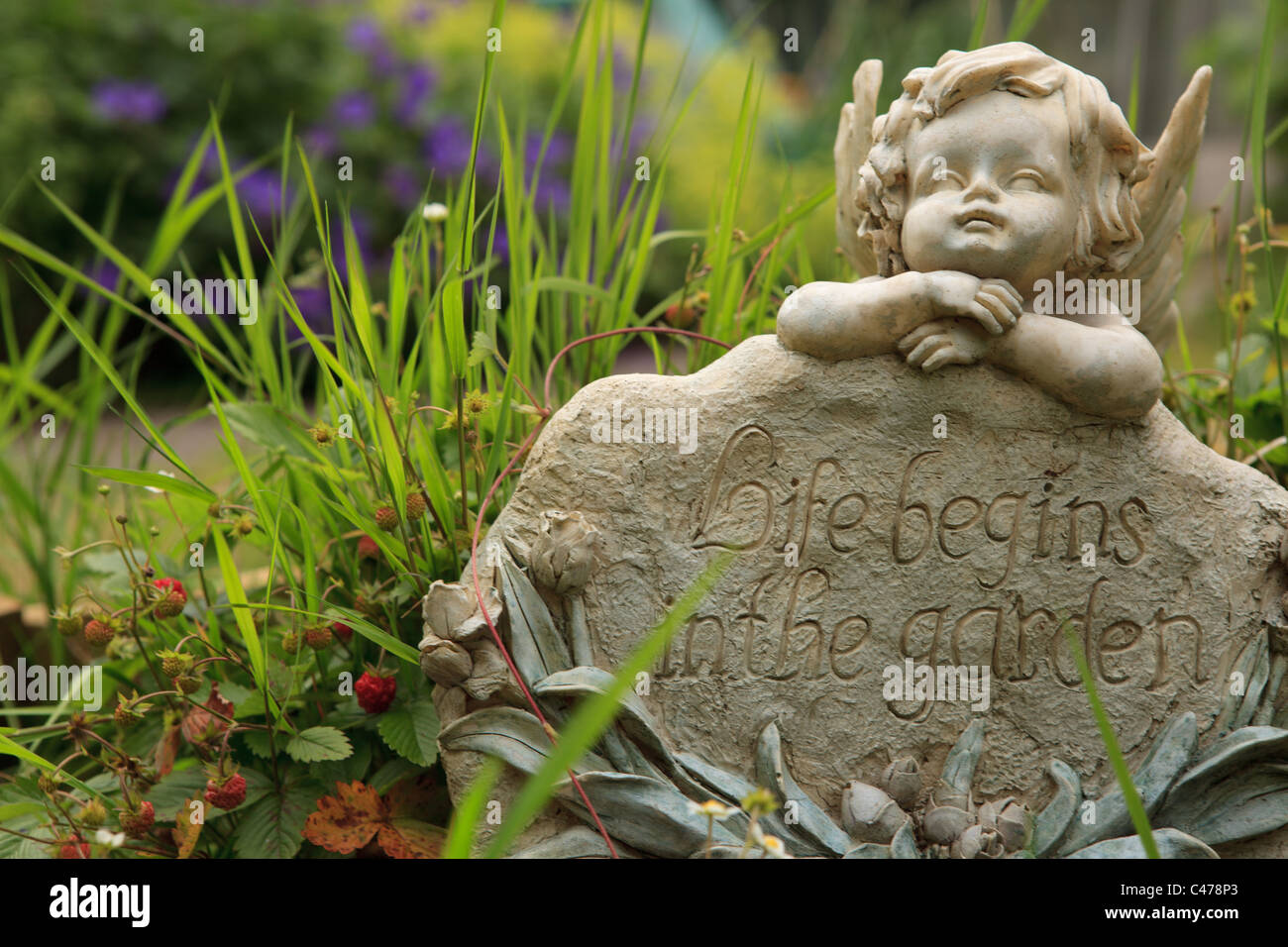 Angelic statue in garden, summertime - Stock Image