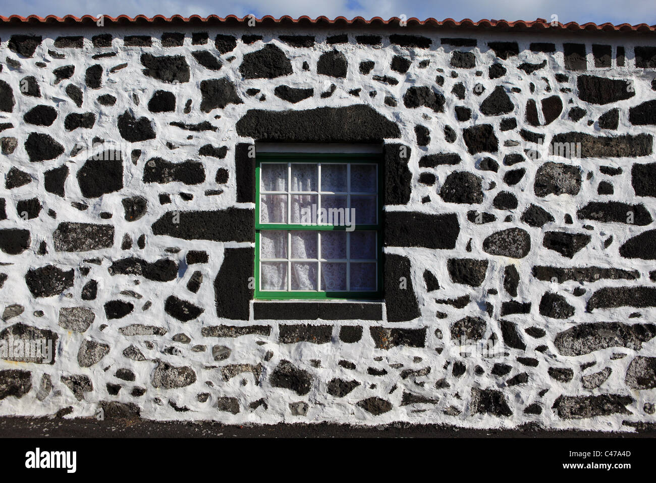 House in Cais do Mourato, Pico Island, Azores, Portugal. White wall with scattered volcanic basalt rock with a green - Stock Image