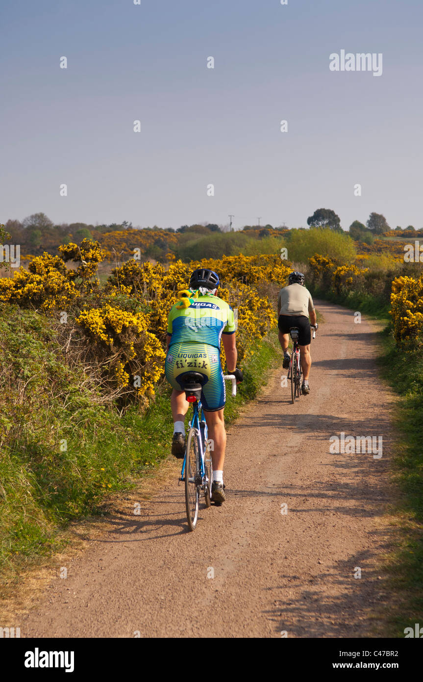 Two cyclists cycling down a track in Southwold , Suffolk , England , Britain , Uk - Stock Image