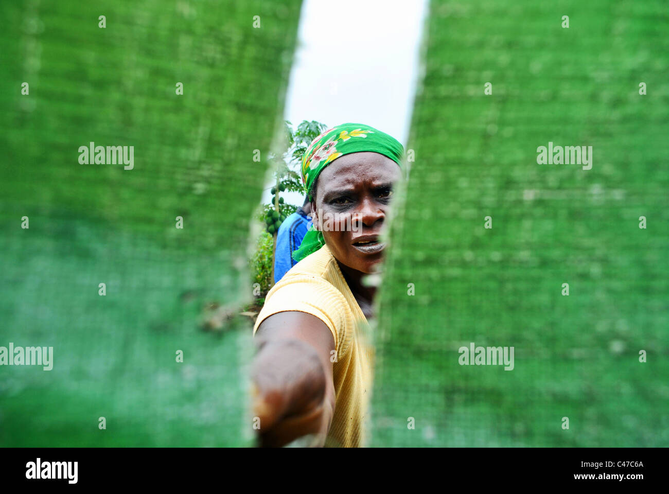 Liberian refugee seen through a hole in her shelter at Tabou Refugee Camp, Ivory Coast - Stock Image