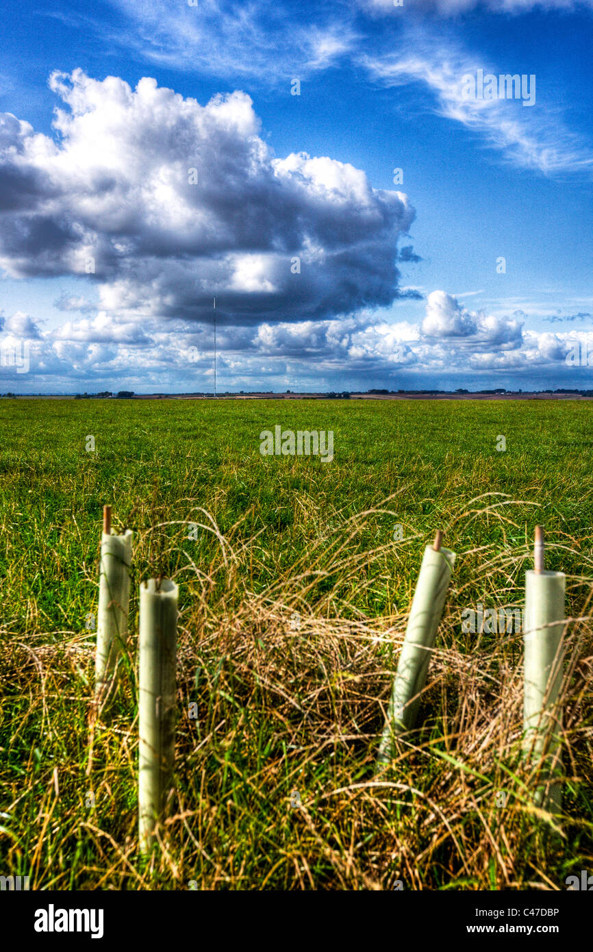 Belmont tv mast due for analogue turn off to digital switchover lincolnshire wolds farm land farmland field fields - Stock Image