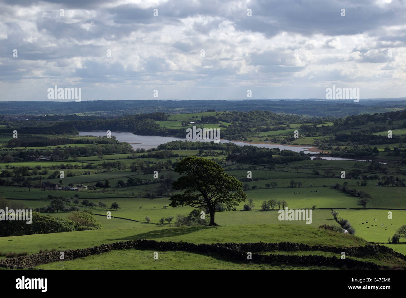 countryside in Peak District Derbyshire England UK - Stock Image