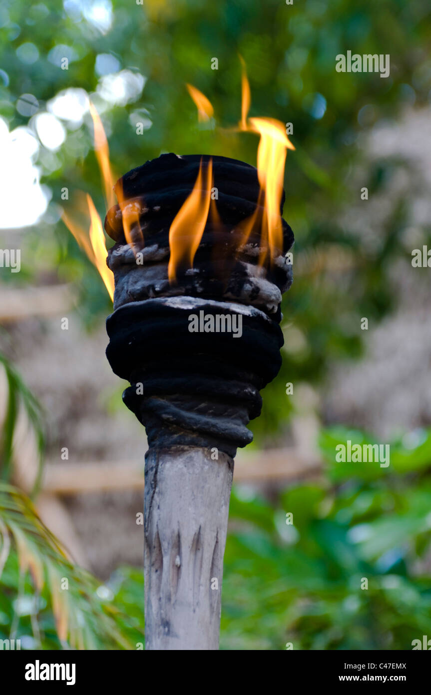 torch flame - Stock Image