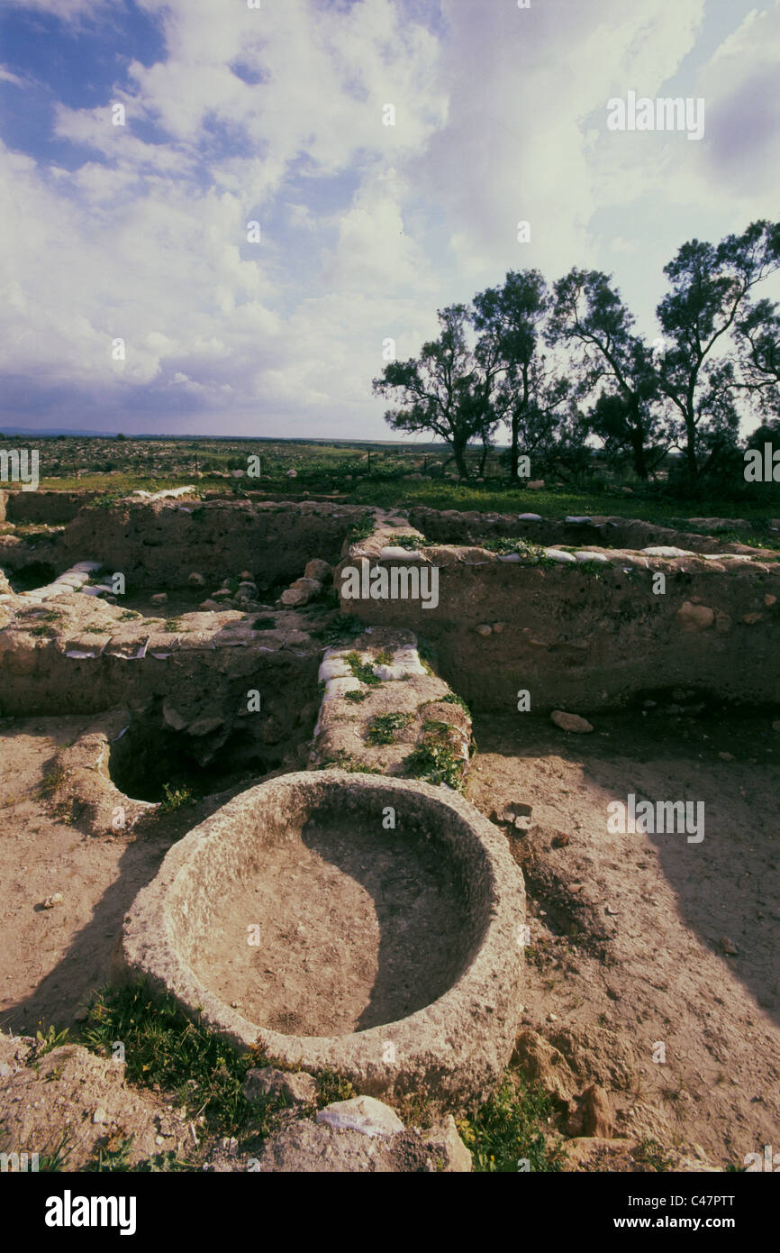 Photograph of mound Safi near the biblical philistine's city of Gath - Stock Image