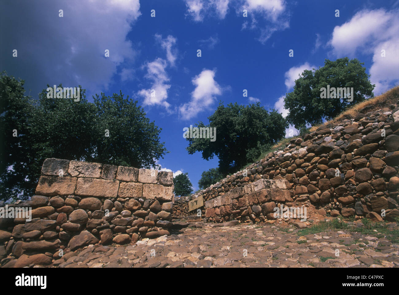 Photograph of the ancient mound of Dan - Stock Image