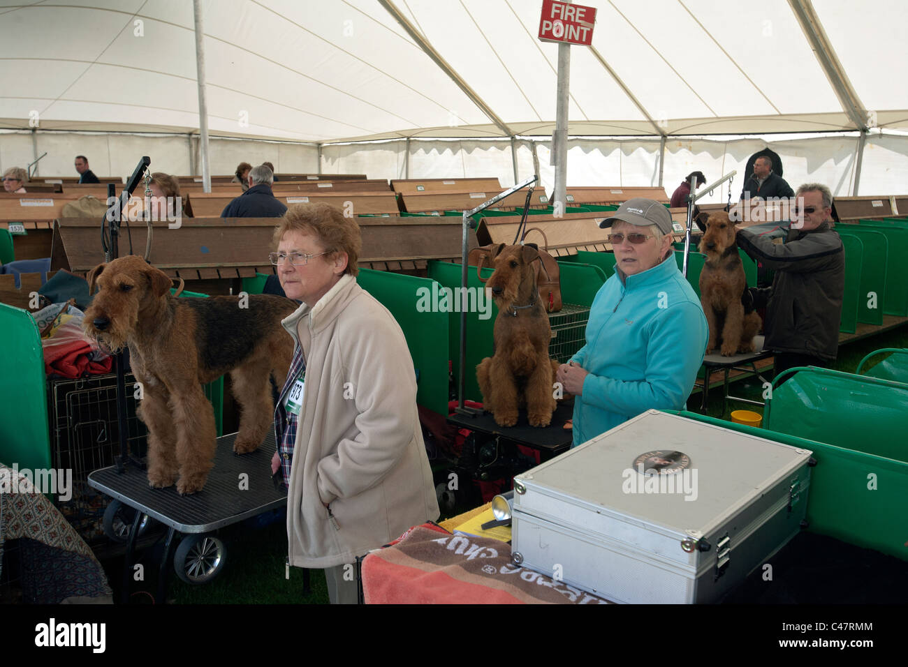 dog owners and terriers at the scottish kennel club show - Stock Image