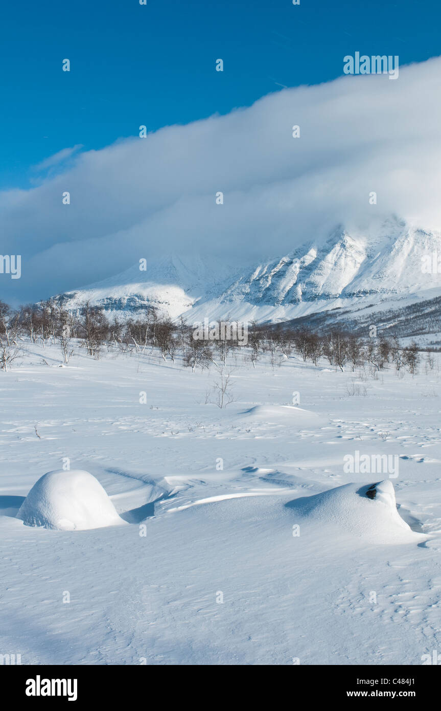 Blick zum wolkenverhuellten Akkamassiv, Stora Sjoefallet Nationalpark, Norrbotten, Lappland, Schweden - Stock Image