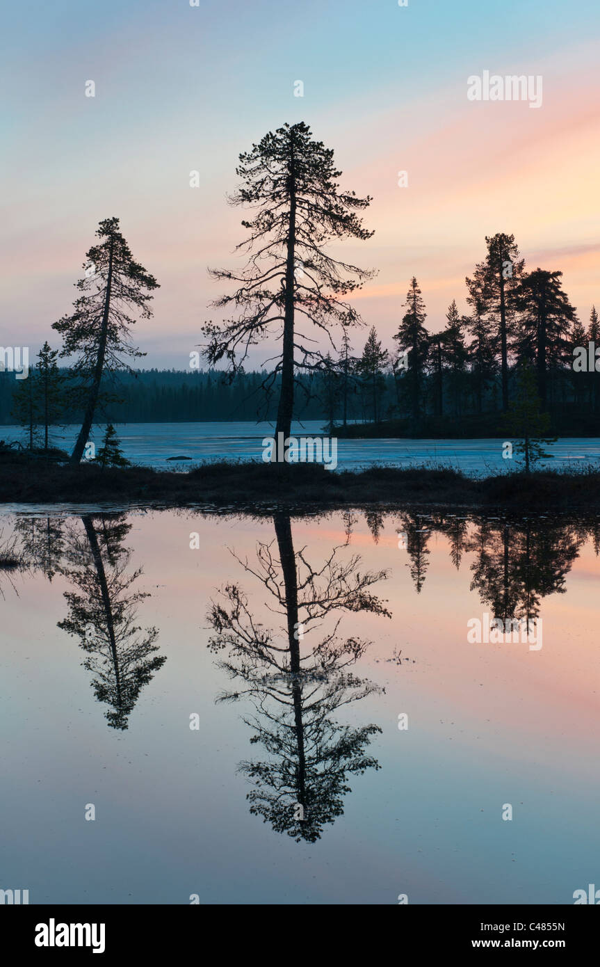 Beautiful scenic lake, evening mood, sweden - Stock Image