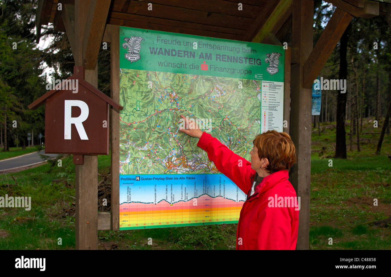 Woman looking at a hiking map of the Rennsteig hiking trial near Oberhof, nature reserve Thuringian Forest, Thuringia, - Stock Image