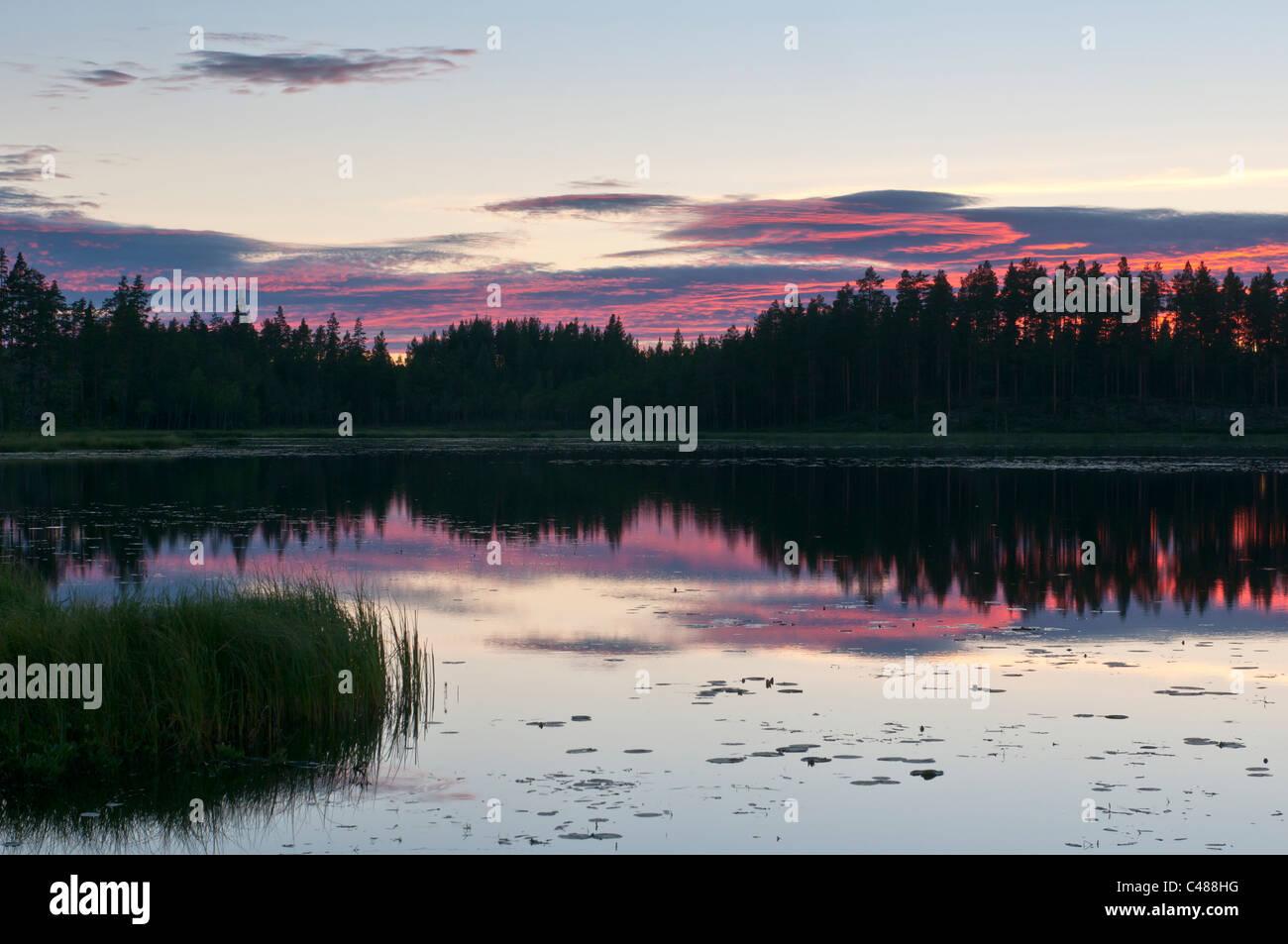Abendstimmung an einem Waldsee, Rena, Hedmark, Norwegen, Evening mood, Lake, Norway Stock Photo
