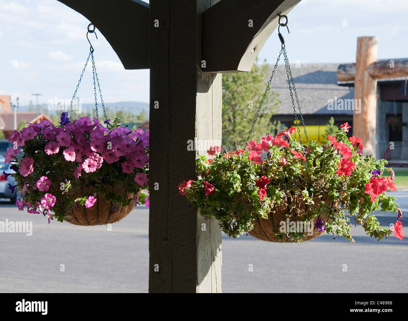 Baskets of flowers hanging from a rough hewn lumber beam in front of gift shops in West Yellowstone, Montana, USA. - Stock Image