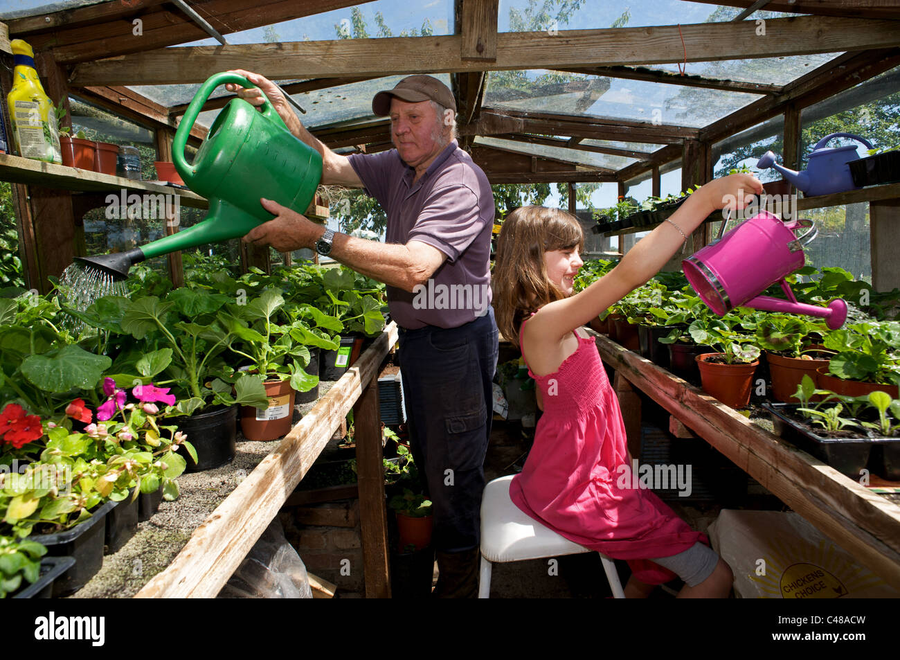 Grandfather and granddaughter watering flowers - Stock Image