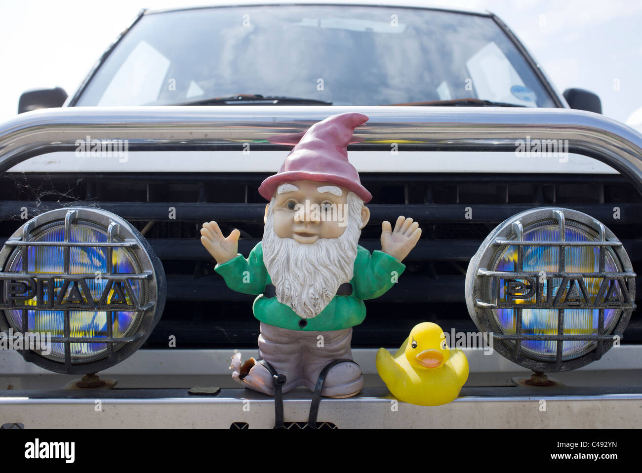 car bumber with garden knome and rubber duck - Stock Image