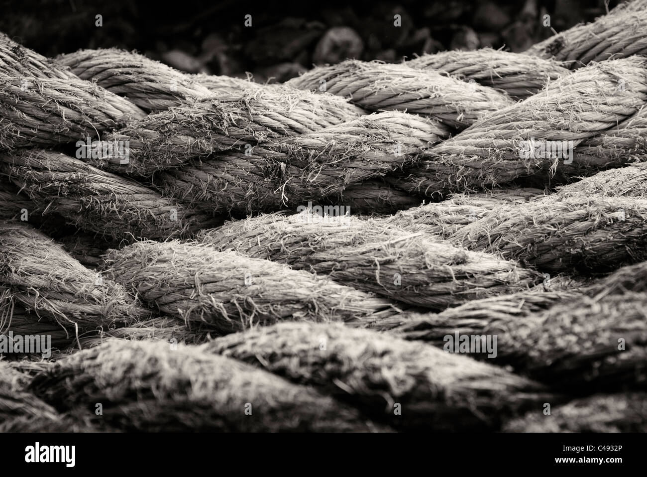 close up of a coil of old rope in black and white - Stock Image