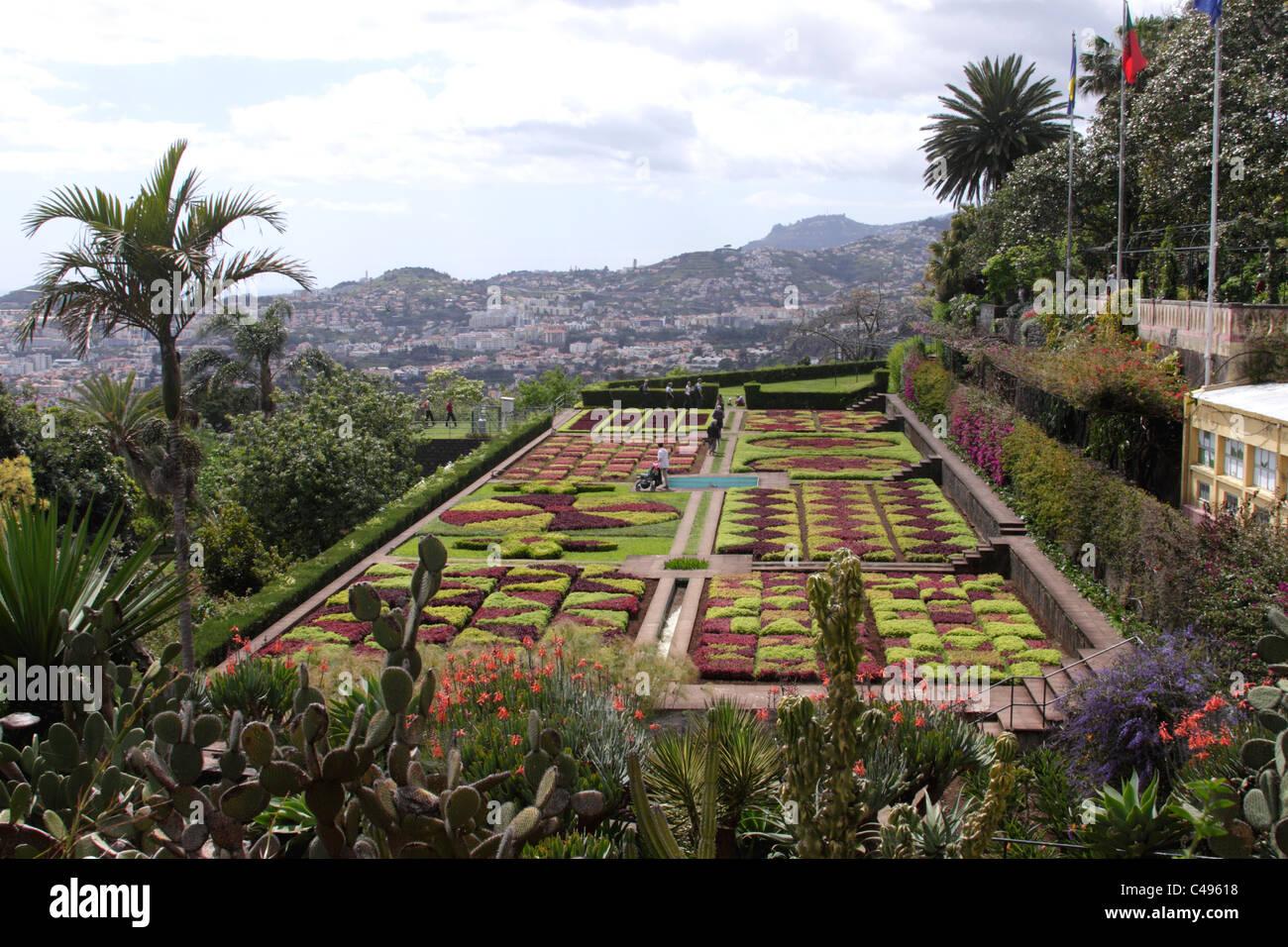 Madeira Botanical Gardens Stock Photos & Madeira Botanical Gardens ...