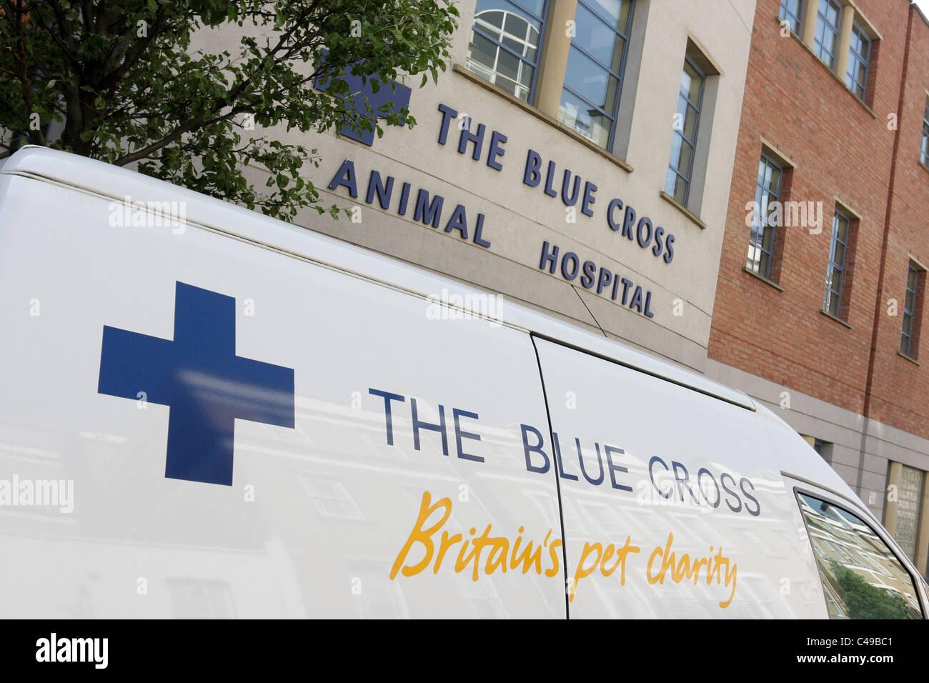 The Blue Cross Animal Hospital in Hugh Street, Victoria, London. - Stock Image