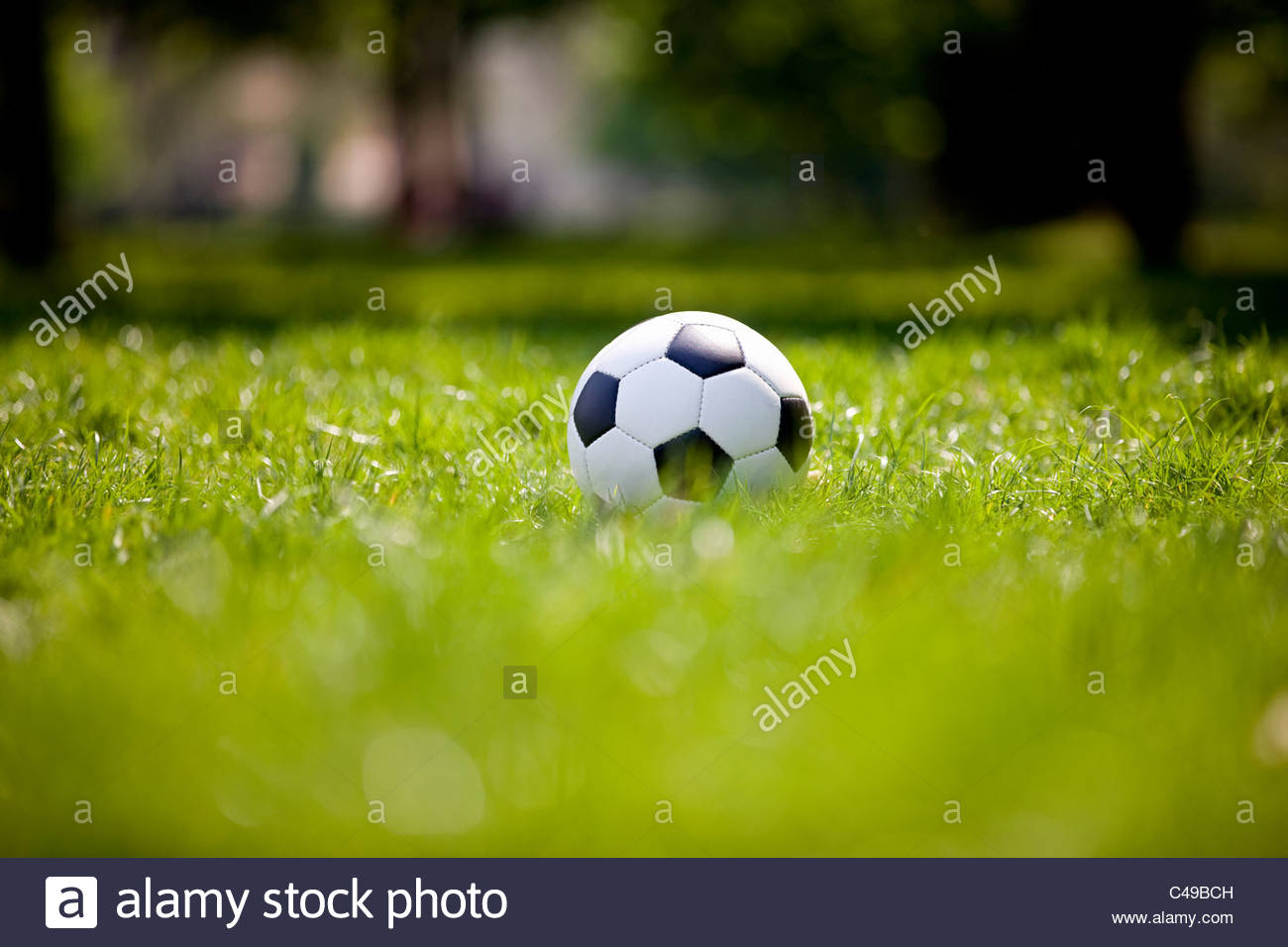 A football on grass - Stock Image