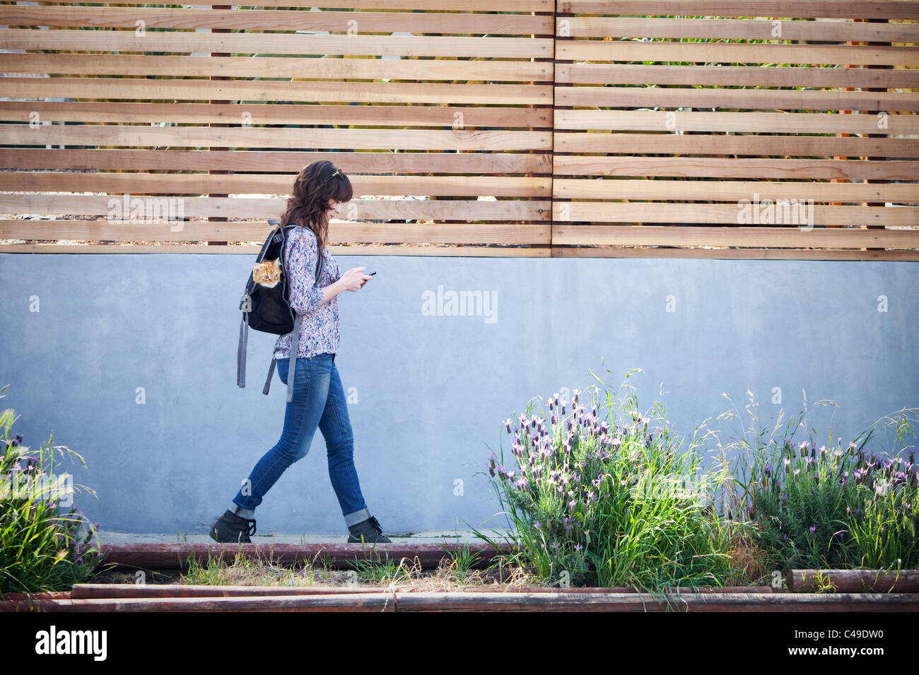 A woman walking down urban neighborhood sidewalk with a cat in her backpack. - Stock Image
