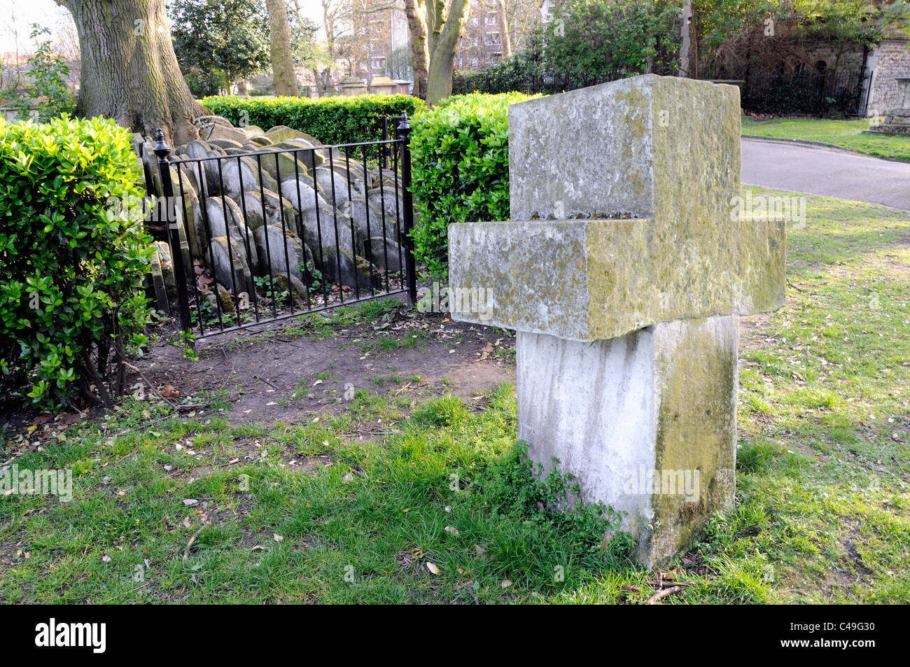 Headstones or gravestones around The Hardy tree with impressive cross shaped stone in forground St. Pancras Churchyard, - Stock Image