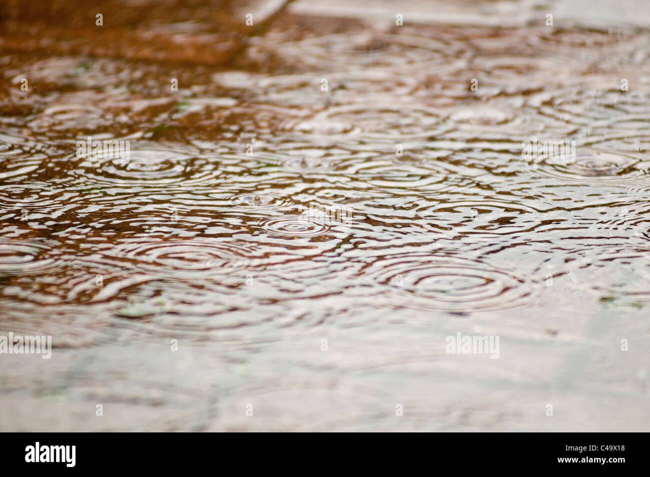rain drop drops storm storms puddles splash splishing heavy downpour water fresh ripple ripples puddle puddles puddling - Stock Image