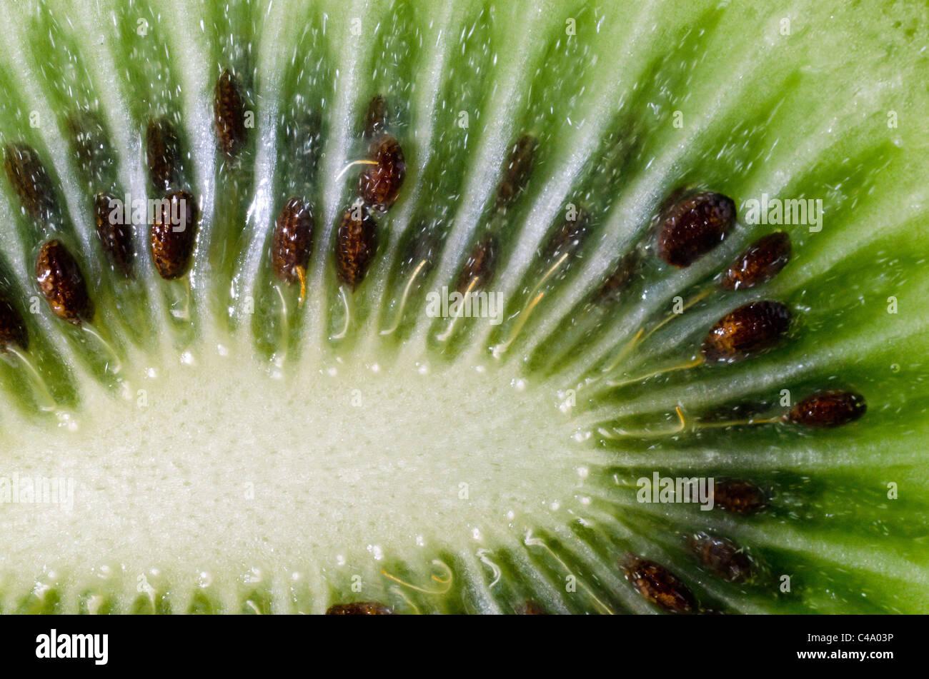 Detail of kiwi fruit - Stock Image