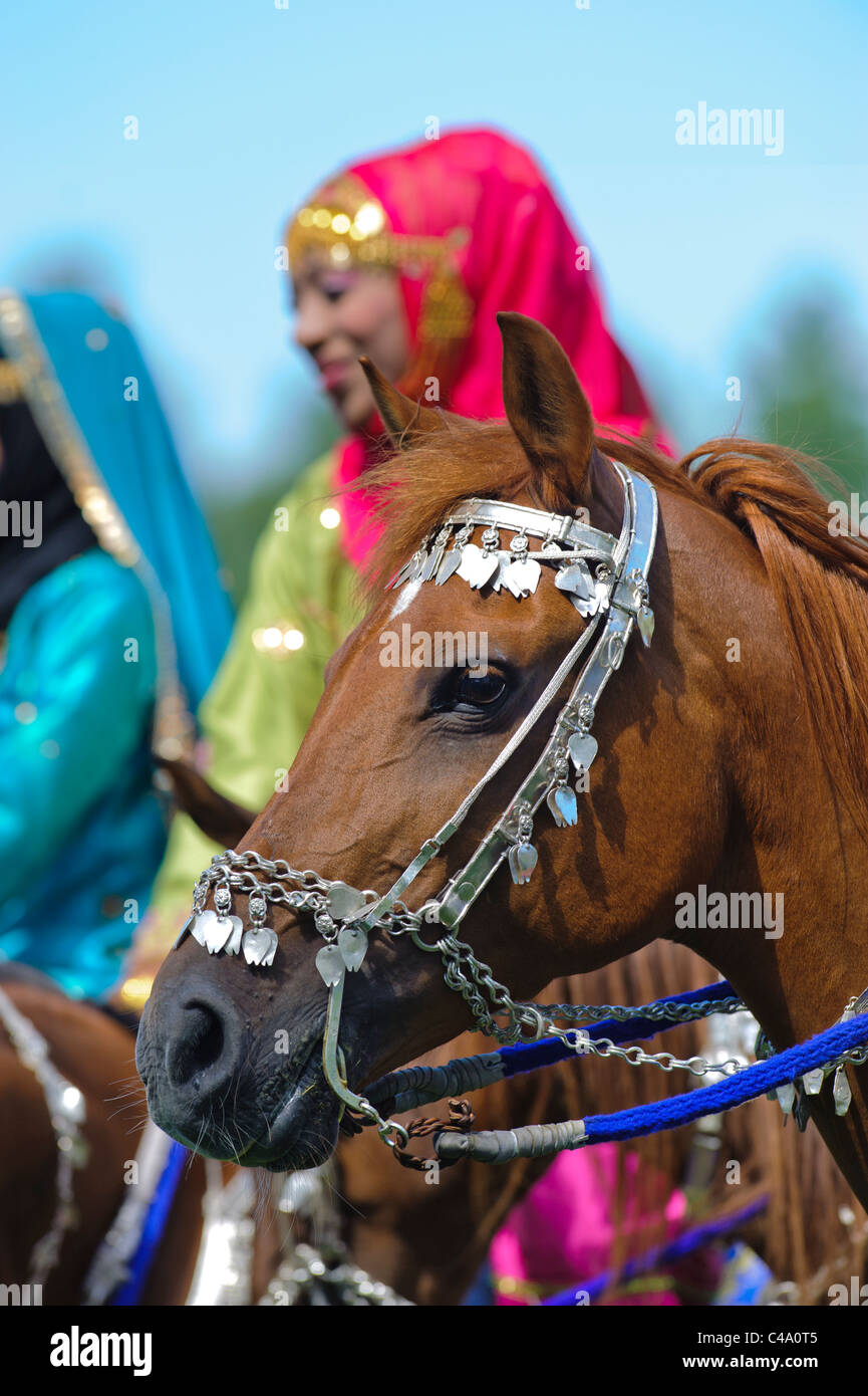 arabian Royal Cavalry of Oman in original costume on arabic horse while a public show performance in Munich, Germany Stock Photo