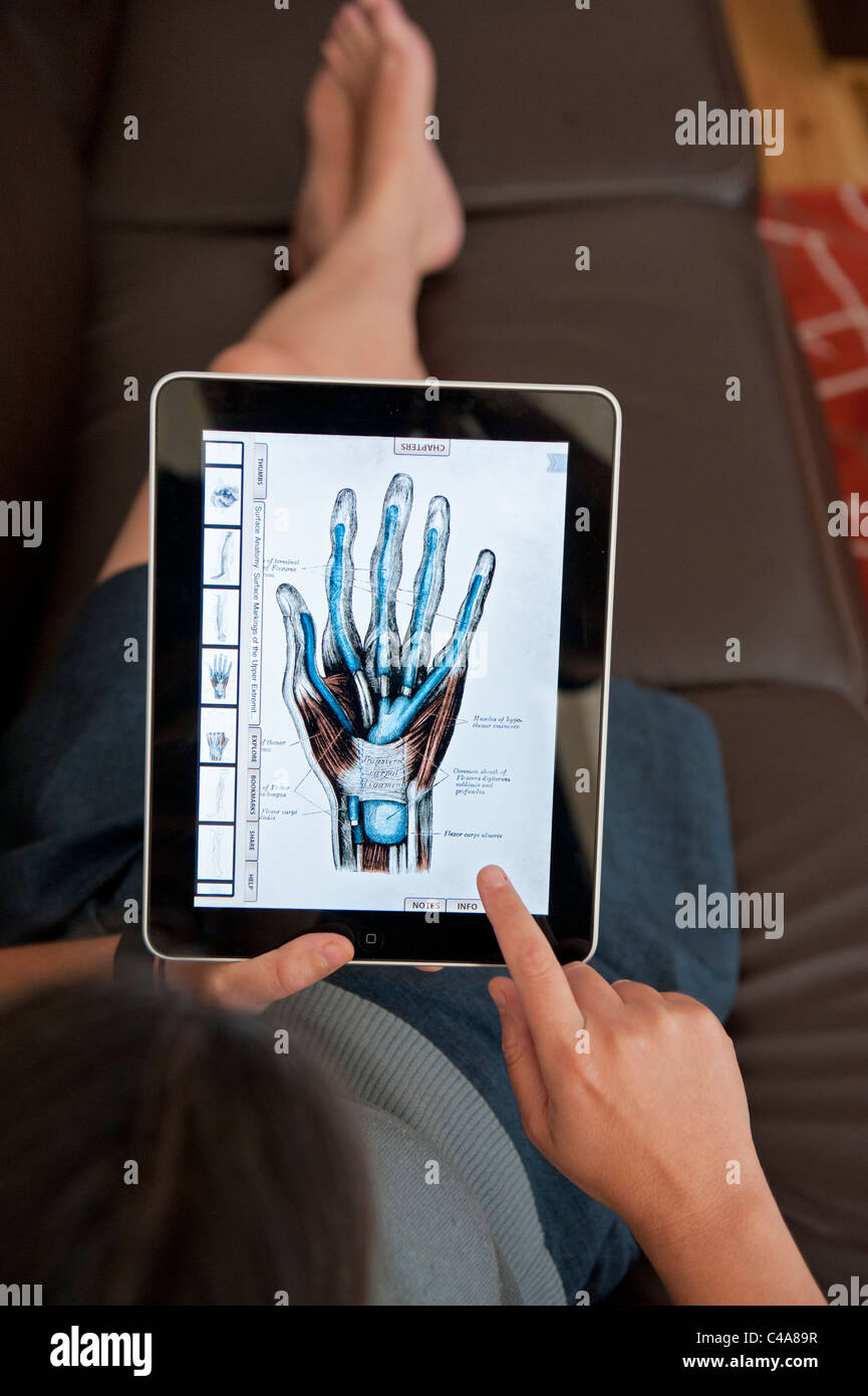 close up of woman using iPad digital tablet computer to study human ...