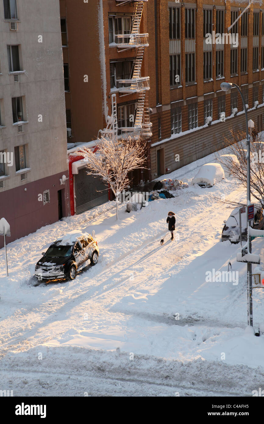 walking dog in snow covered East Village New York City - Stock Image