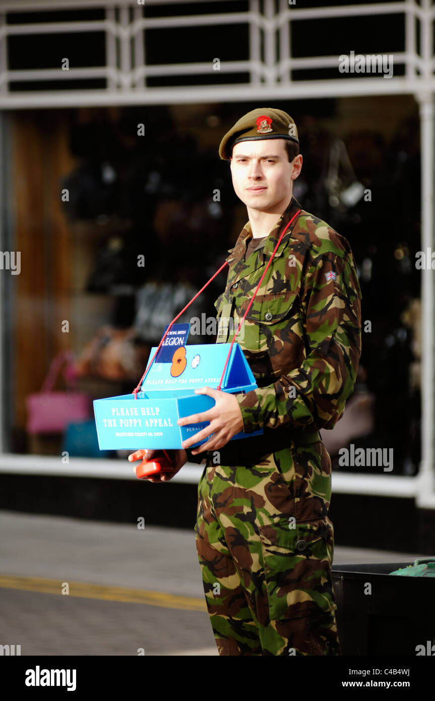 Young soldier in uniform collecting money for the royal British, Legion Poppy Appeal, Aberystwyth, Wales. - Stock Image