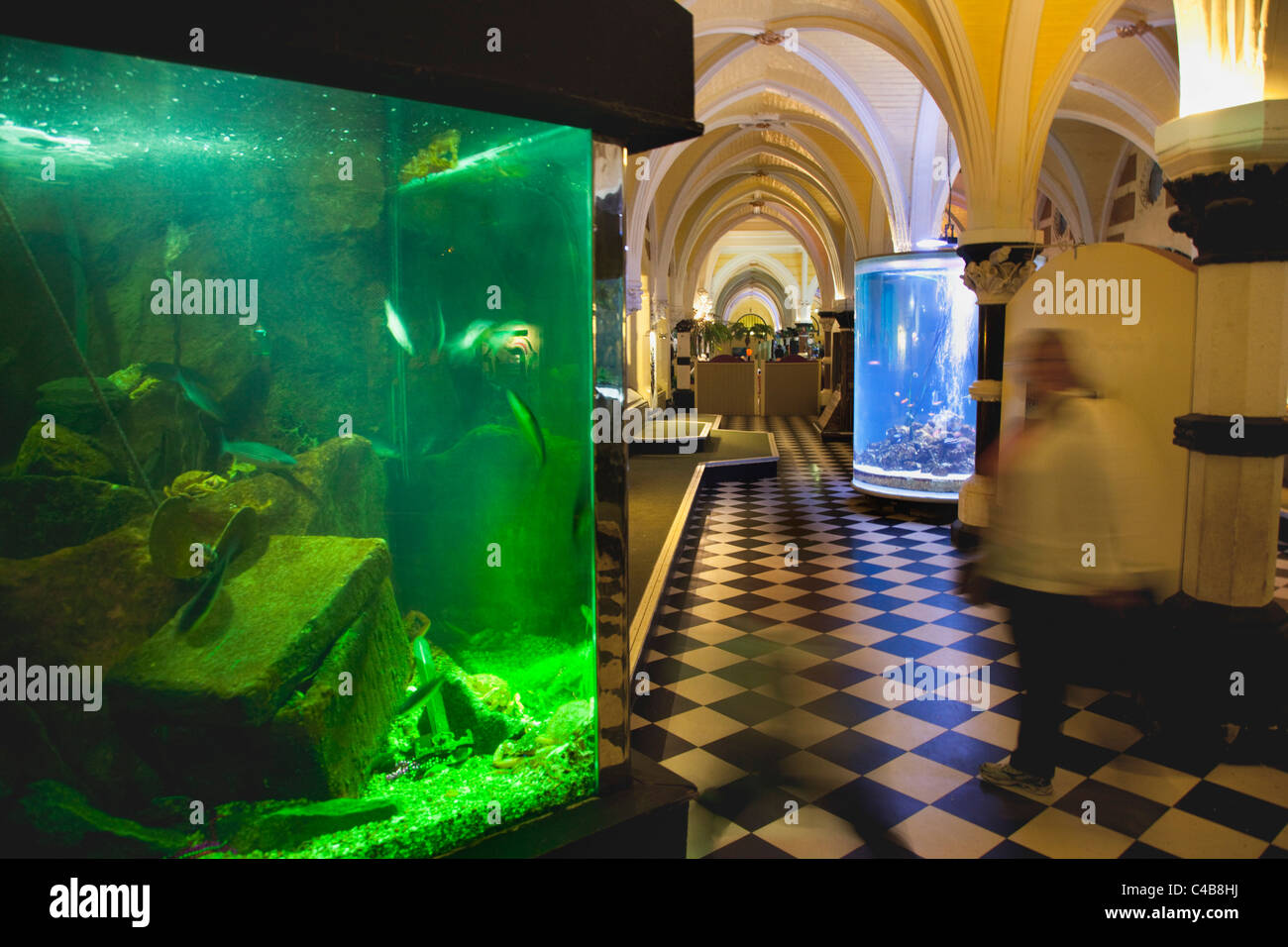 England, East Sussex, Brighton, Interior of the Sea Life Centre underground Aquarium on the seafront. - Stock Image