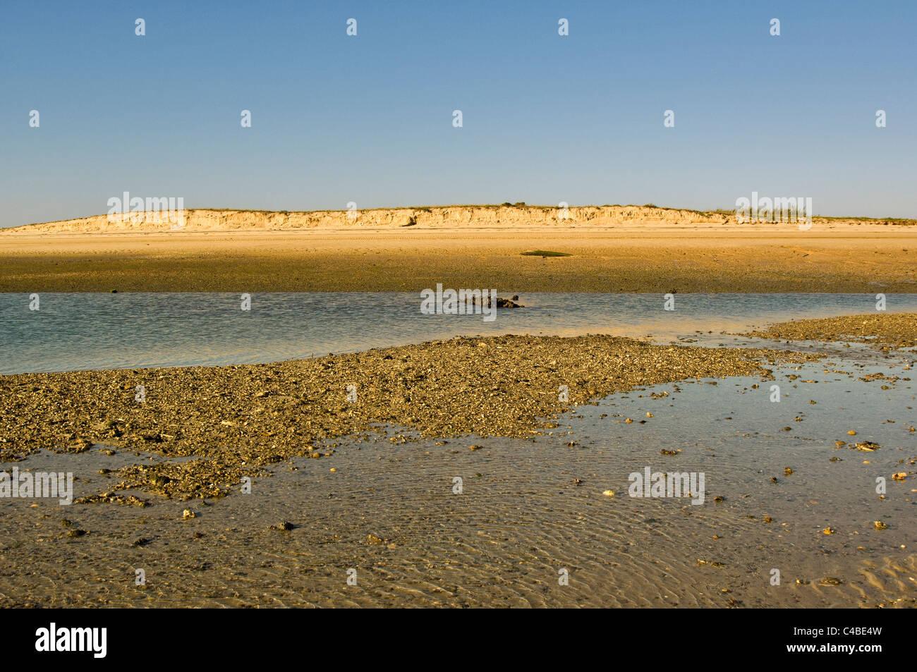 The Ria Formosa near Faro, Algarve, Portugal - Stock Image