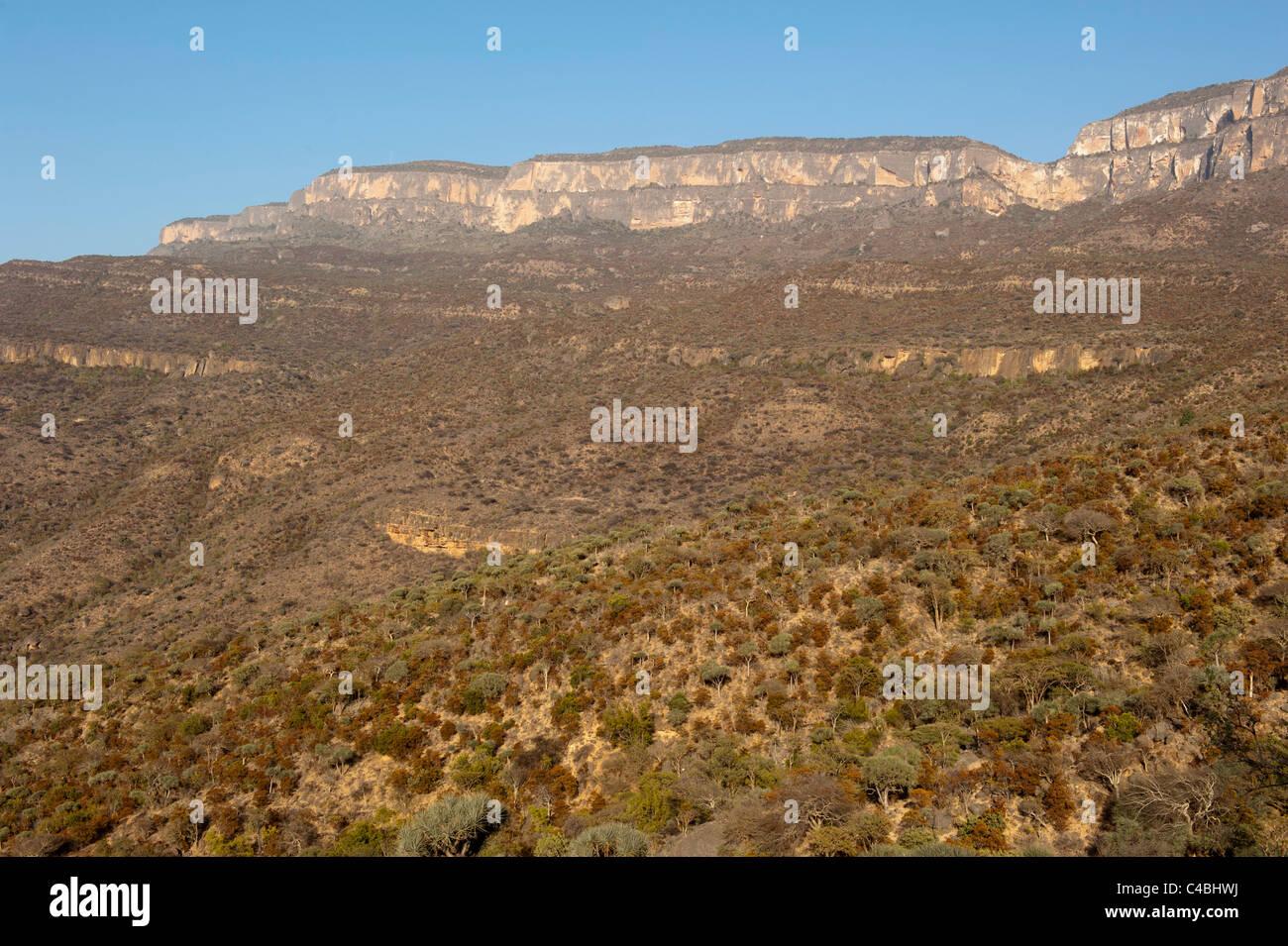 Daallo escarpment, Somaliland, Somalia - Stock Image