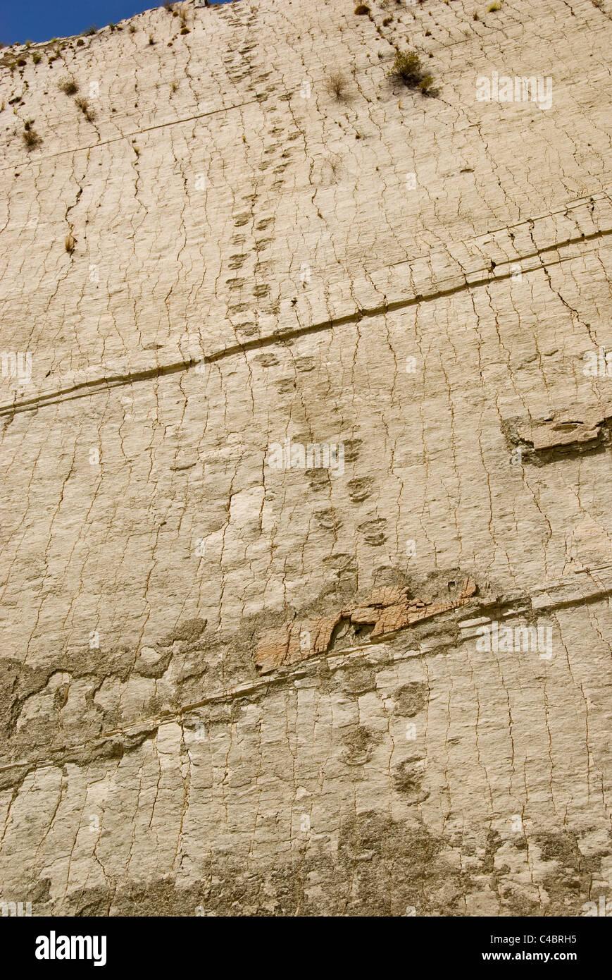 Sucre, Cal Orcko, Francesca Quarry, dinosaur tracks - Stock Image