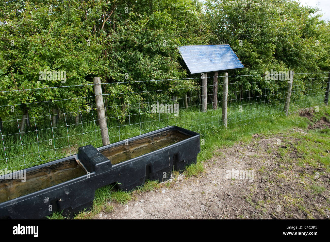 Livestock drinking trough, filled with solar powered pump. - Stock Image