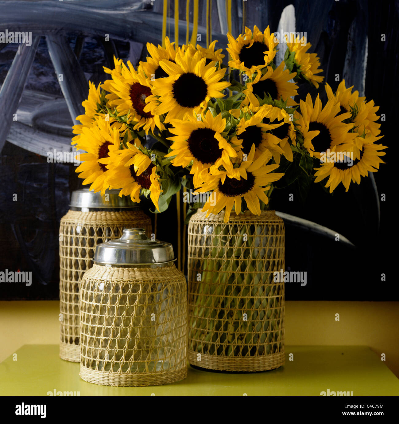 Sunflowers in glass jar with woven mesh - Stock Image