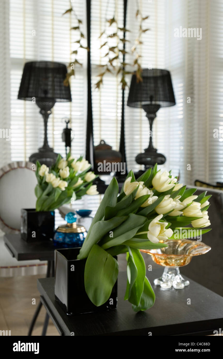 Bunch of tulips in a black square vase with mirror reflection - Stock Image