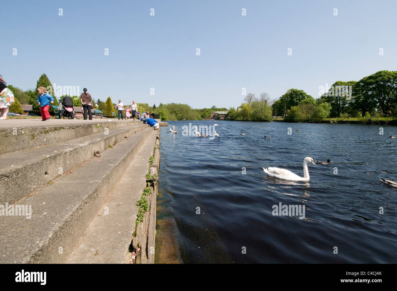 otley river wharfe wharfemeadows park west yorkshire tiitybottle park tourist visitors visitor attraction attractions Stock Photo