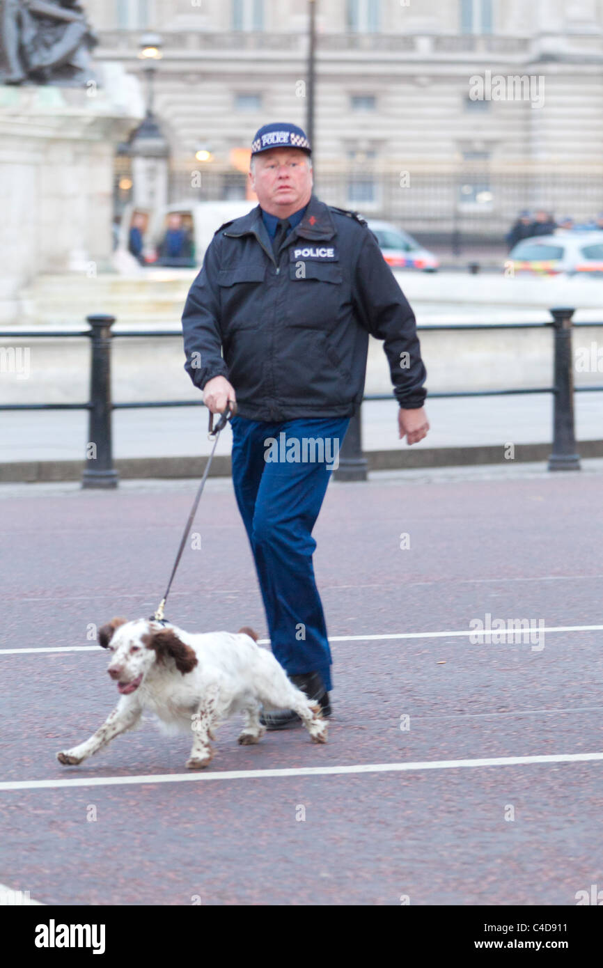 Bomb sniffer dogs in the early hours before the royal wedding of Prince William and Kate Middleton, (April 29, 2011), - Stock Image
