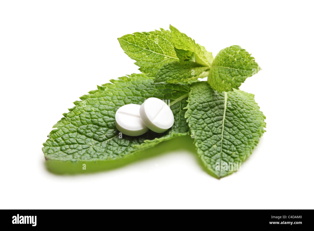 White pills on a green leaves of mint - Stock Image
