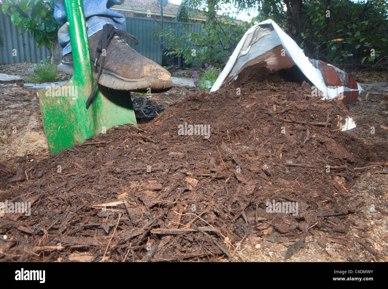 Mulch made from shredded bark and wood poured from a bag onto the garden - Stock Image