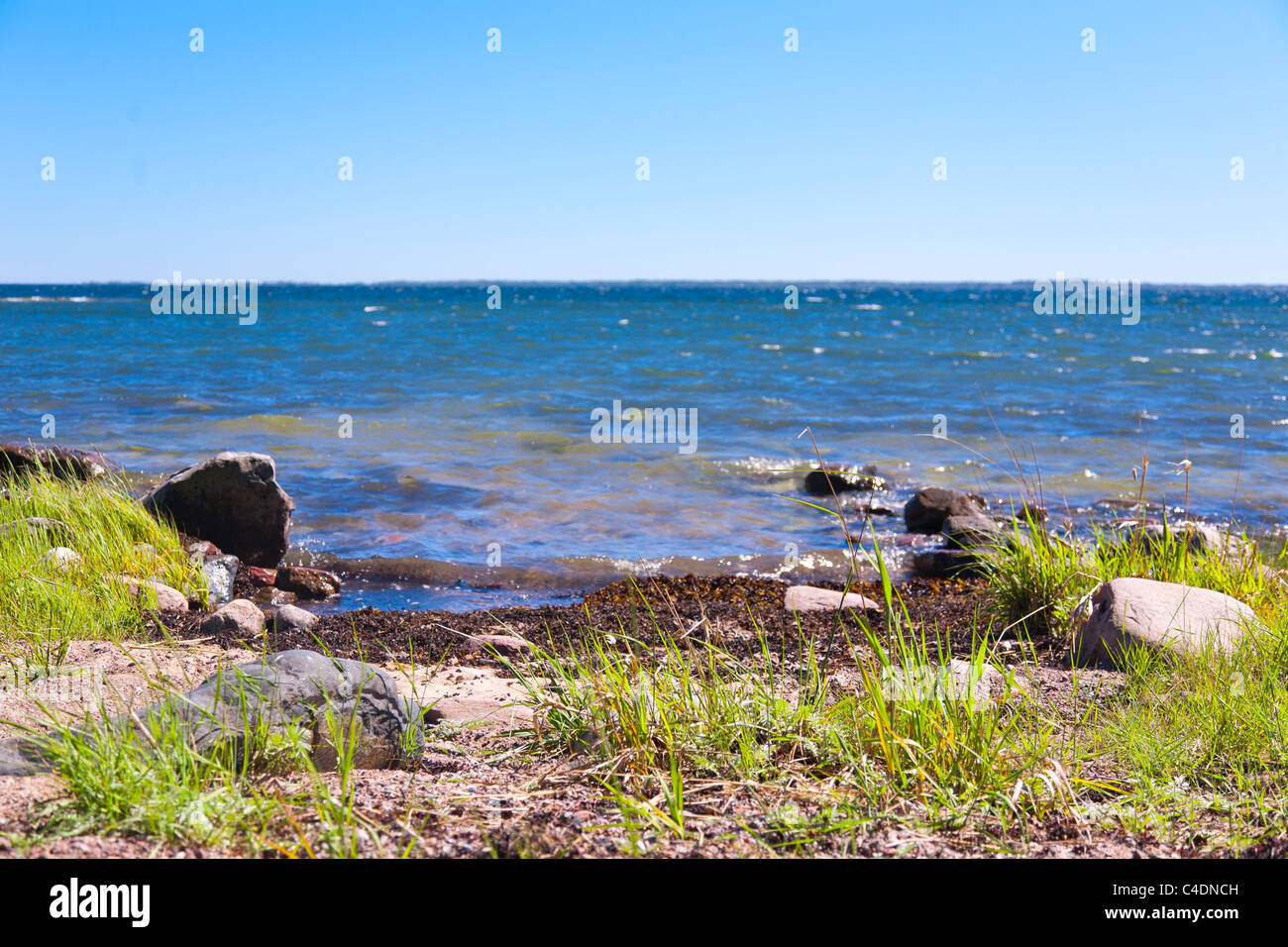 Beach on Blido in the 'Archipelago of Stockholm', Sweden. - Stock Image