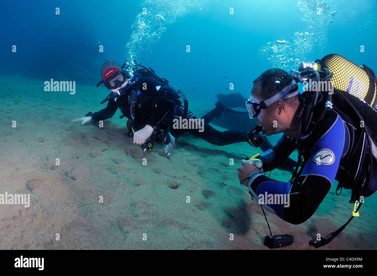 Scuba divers on sandy seabed, blue water Stock Photo