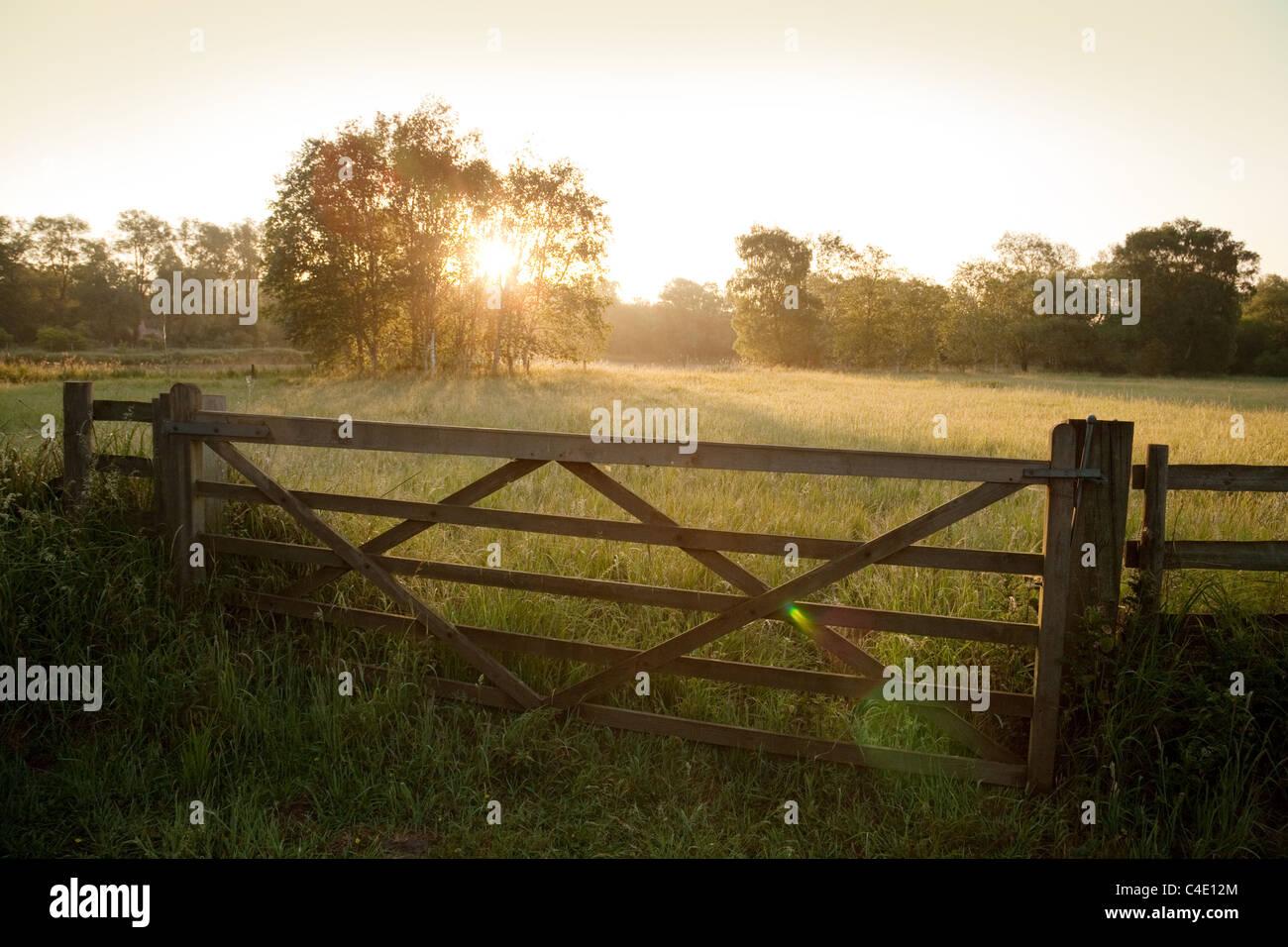 Peaceful english countryside at dawn, Lackford Lakes, Suffolk, UK - Stock Image