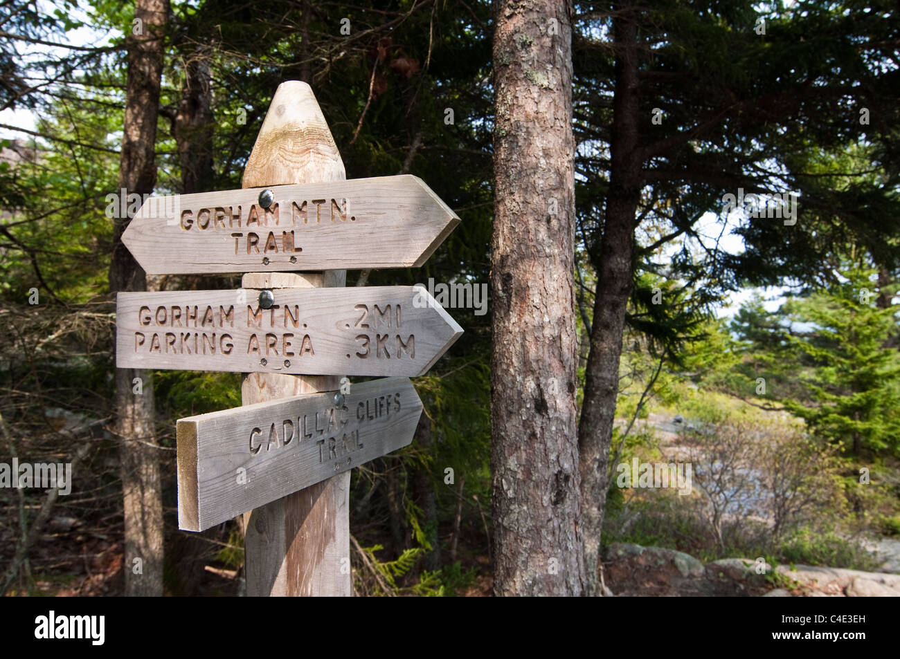 An intersection along the Gorham Mountain Trail in Acadia National Park on Mount Desert Island in Maine. - Stock Image