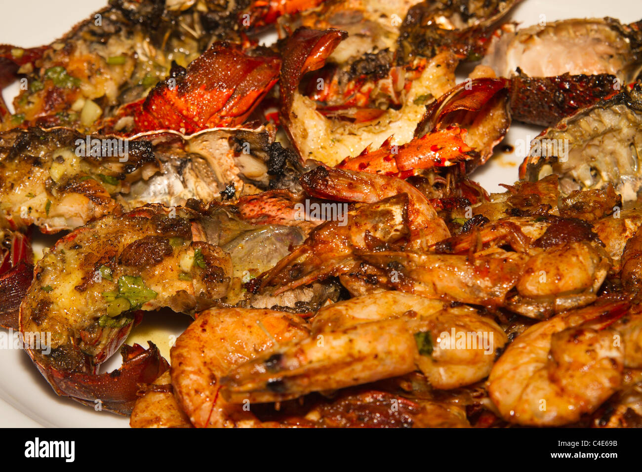 Delicious exotic bbq lobsters sri lanka indian ocean sea food delicious exotic bbq lobsters sri lanka indian ocean sea food forumfinder Choice Image